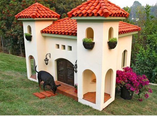 Celebrity dog house