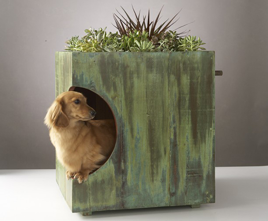 green roof dog house