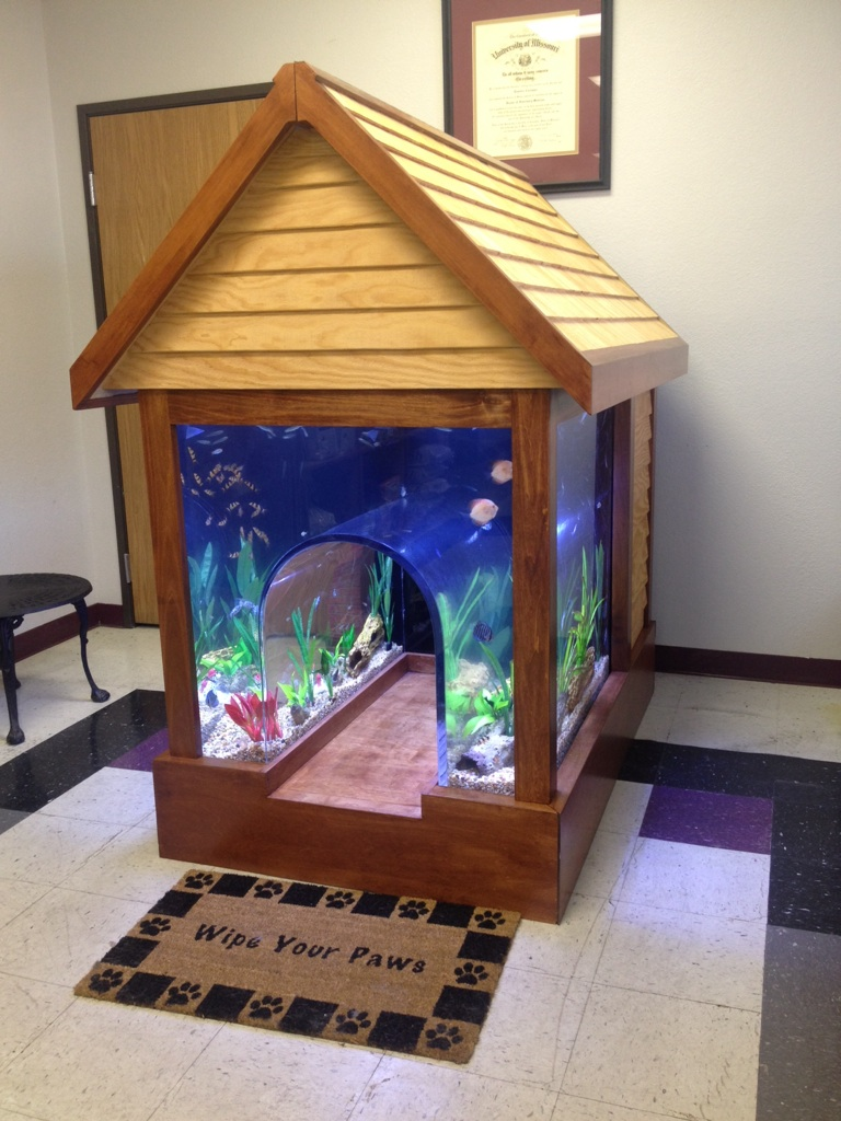 18 magnificent aquarium designs for your home. Black Bedroom Furniture Sets. Home Design Ideas