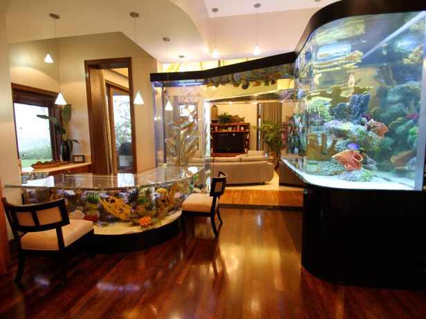 18 magnificent aquarium designs for your home - Decorative fish tanks for living rooms ...