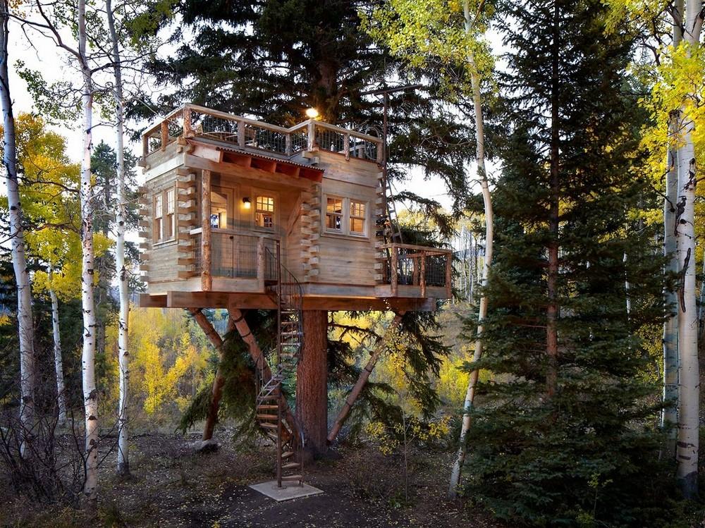 tree house-6