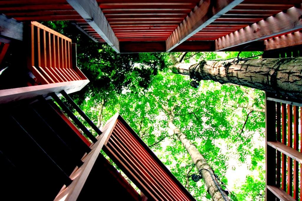 treehouse-12