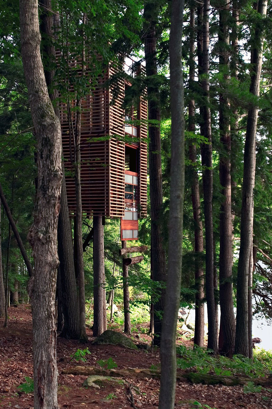 treehouse-4
