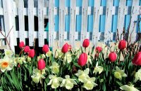CREA May home prices