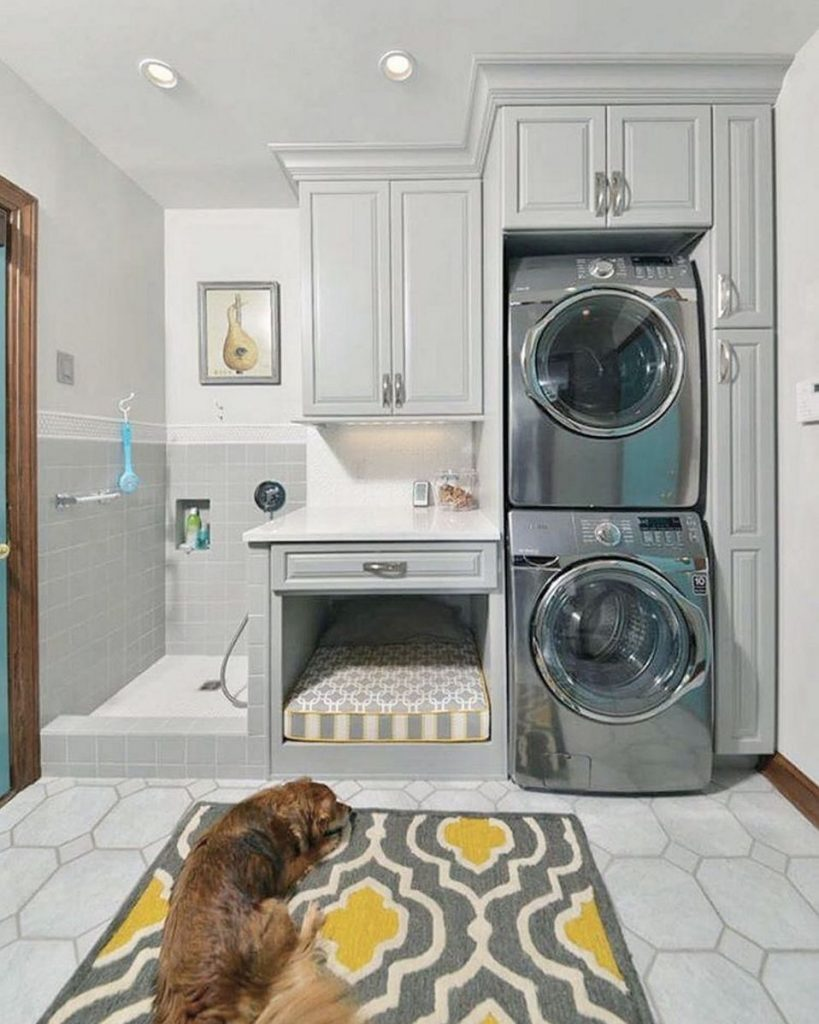 dog area