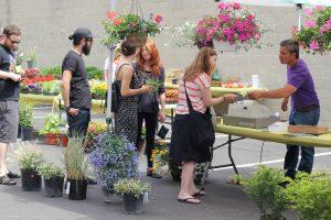 109oz urban garden pop up