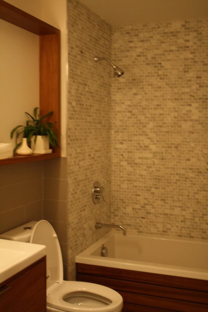 123 Fort Greene bathroom