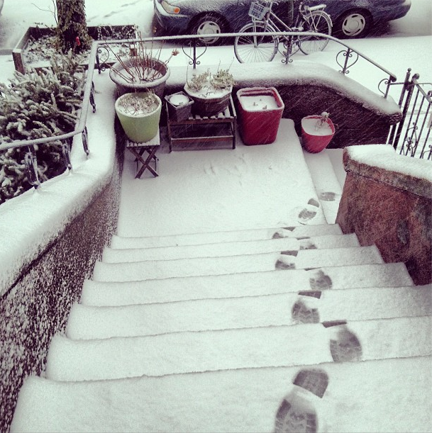 Don't slip on the Brownstone steps! Photo by _duffey_