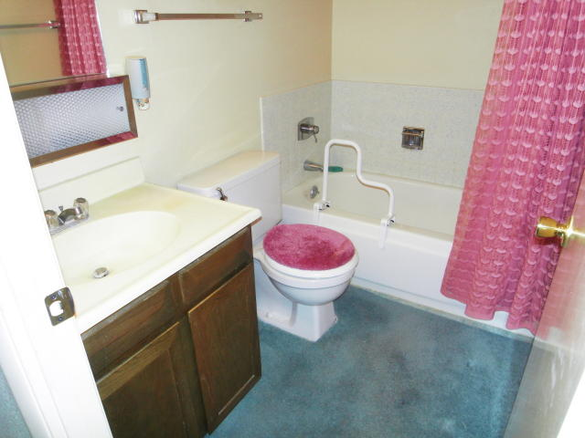 Carpeted Bathroom