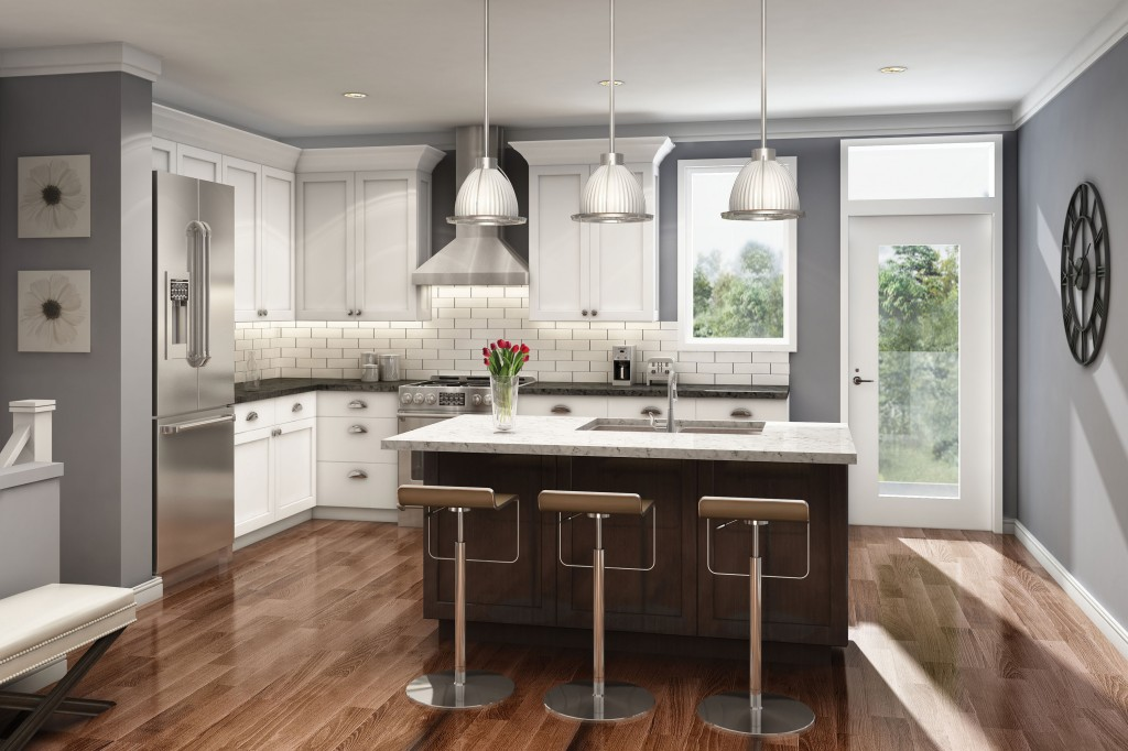Canal East eQ Homes kitchen