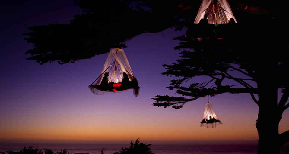 Camping in trees