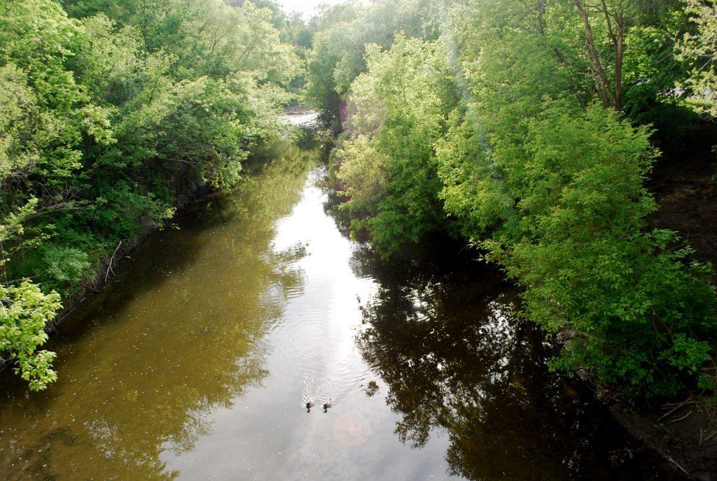 Islington Village Mimico Creek