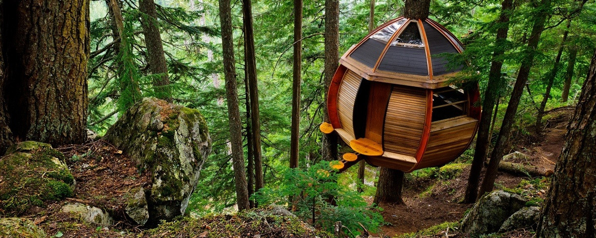 Vancouer island treehouse