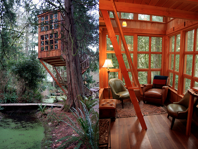 upscale treehouse 1