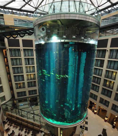 strangest-elevators-01-0811-xln-57816022