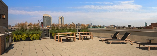 Williamsburg Townhomes roof deck