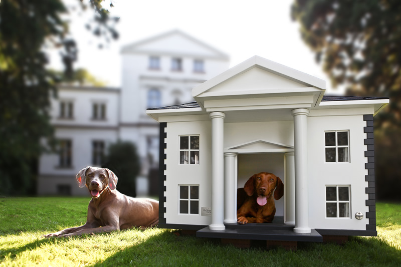 9 absurd dog house designs for your overly pampered pet on squirrel home design, cat home design, funny home design, aquarius home design, snow home design, river home design, friends home design, pigeon home design, barclay home design, bear home design, fall home design, baby home design, family home design, turkey home design, female home design, wolf home design, rabbit home design, love home design, christmas home design, farm home design,