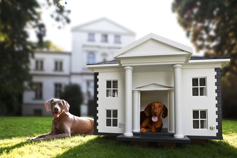 High end dog house