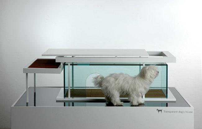 Transparent dog house