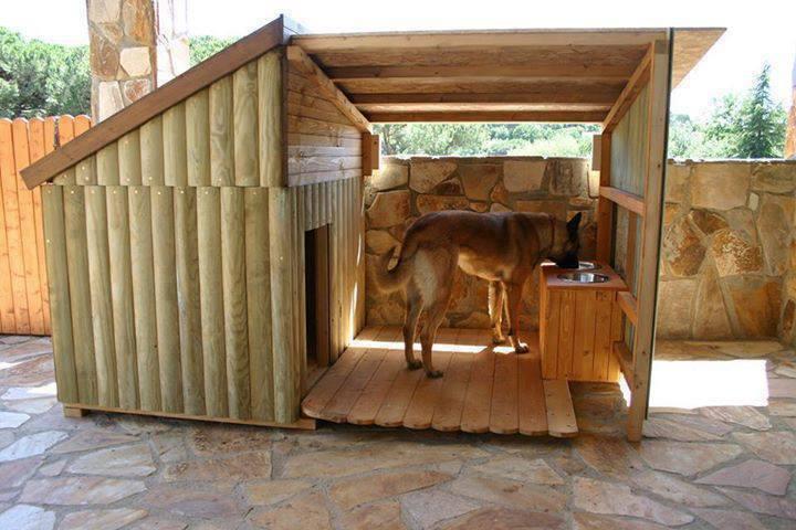 dog house log cabin