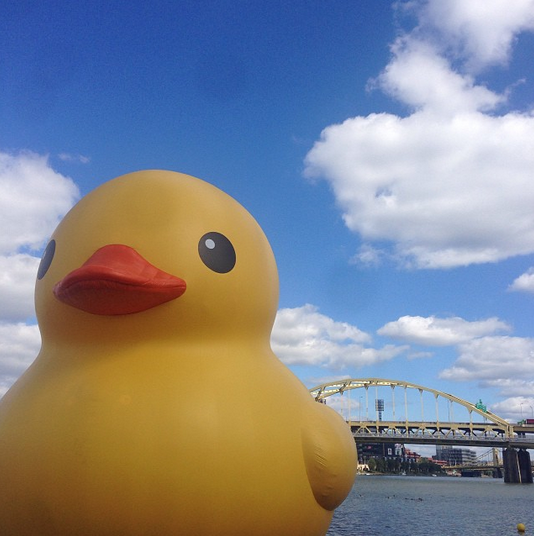 rubber duck pittsburgh