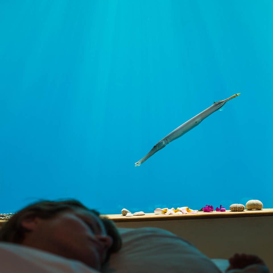 underwater hotel-1