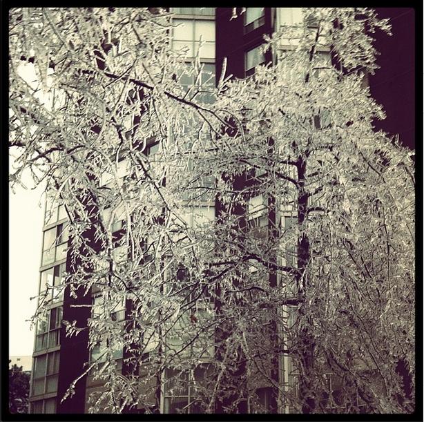 Icestorm 2013