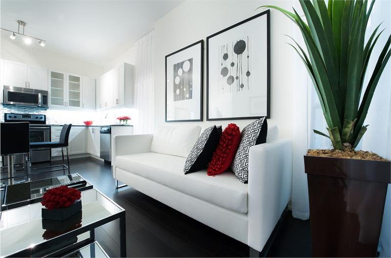 arthouse model suite