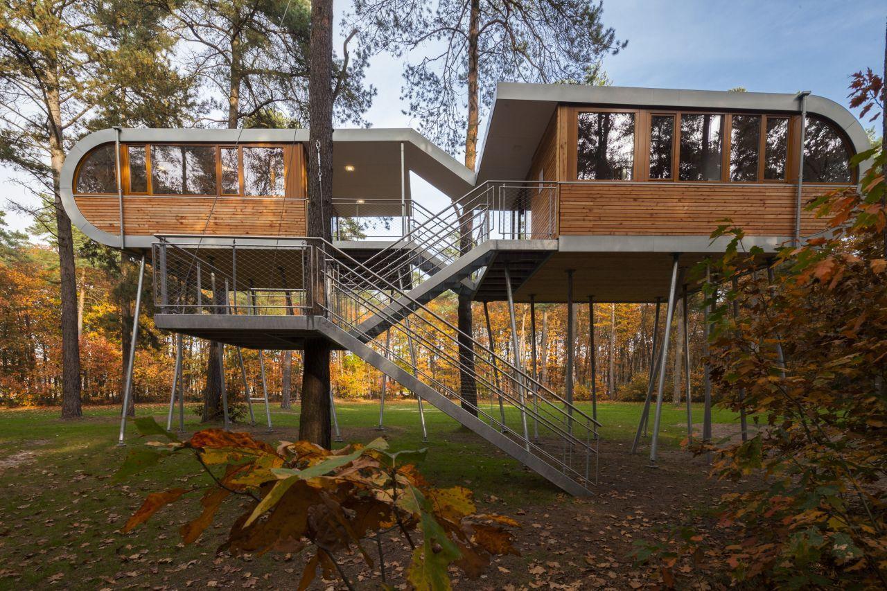 tree house-1