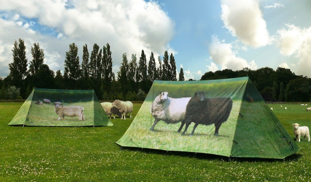 sheep tent