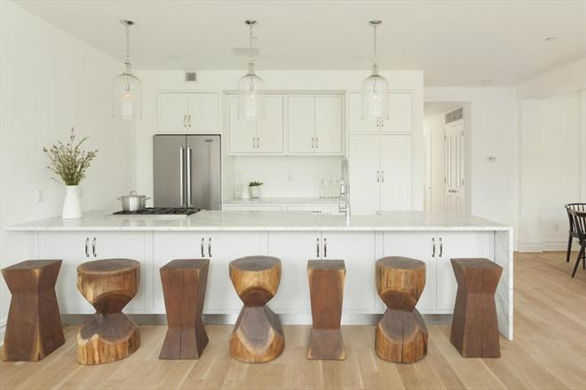 77 Douglass kitchen