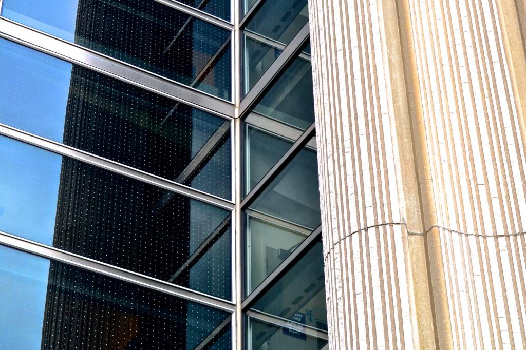 city hall toronto bird markers