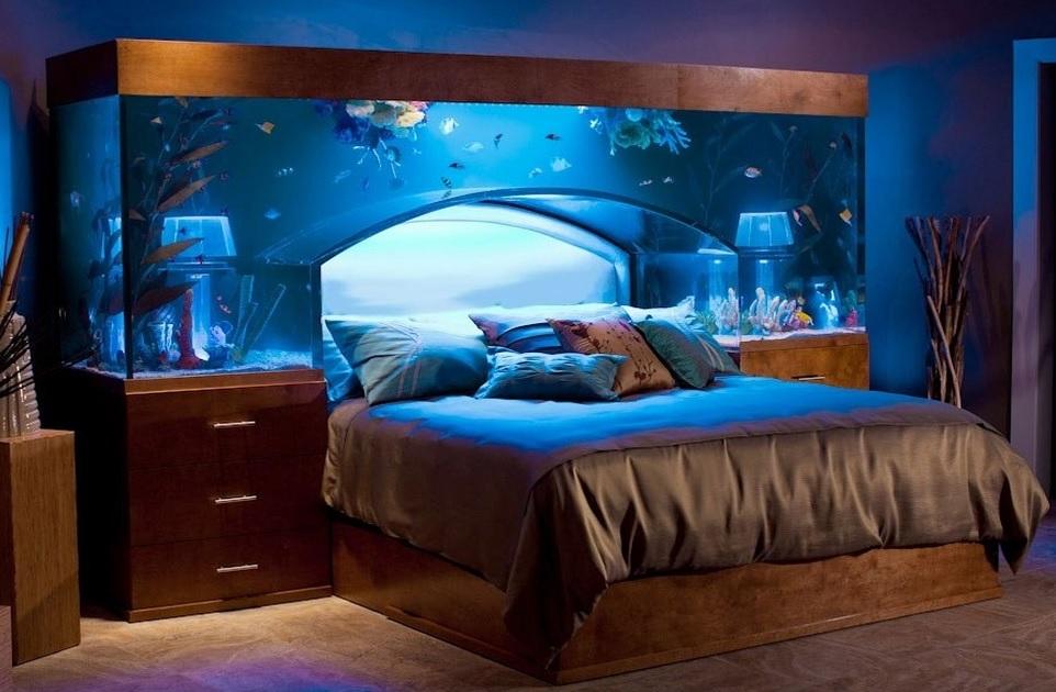 bed fish tank