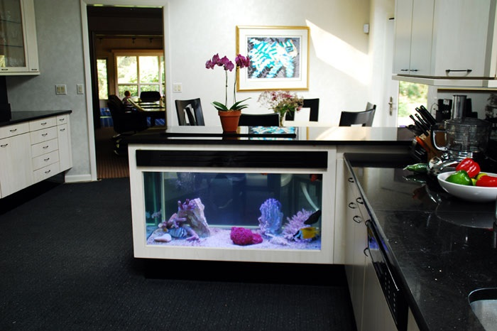 kitchen island fish tank