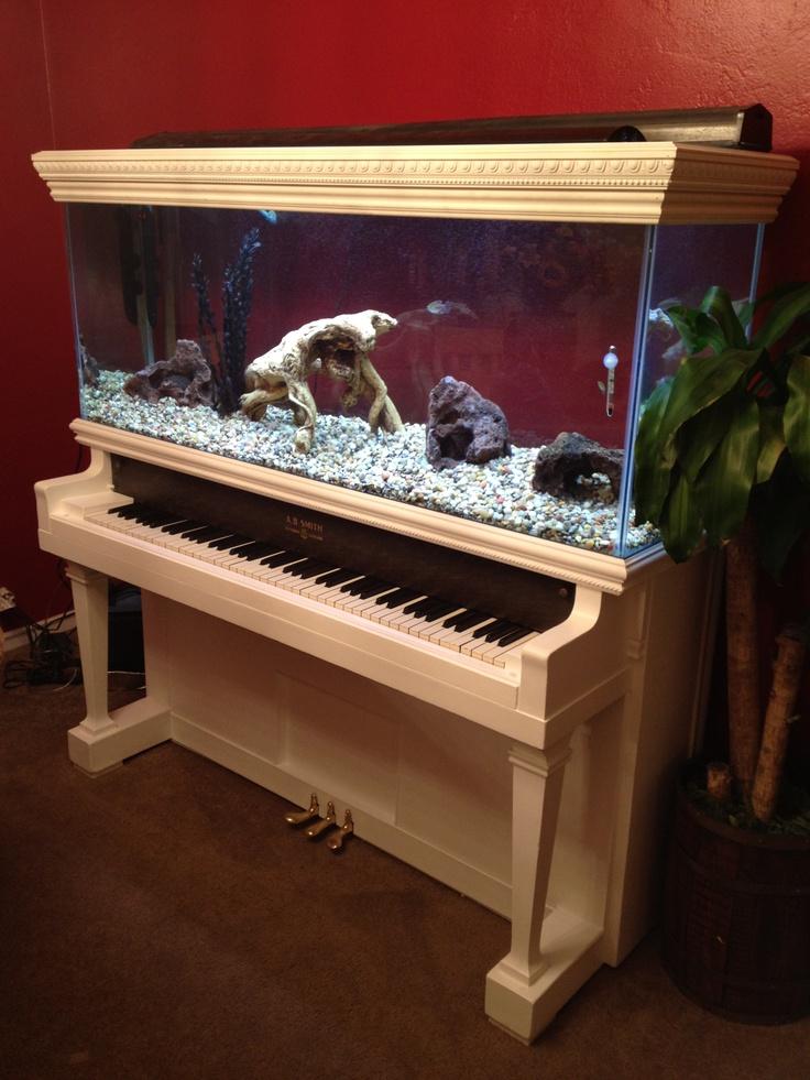 piano fish tank