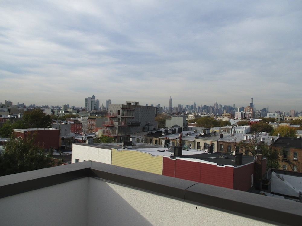 74 Maujer roof deck