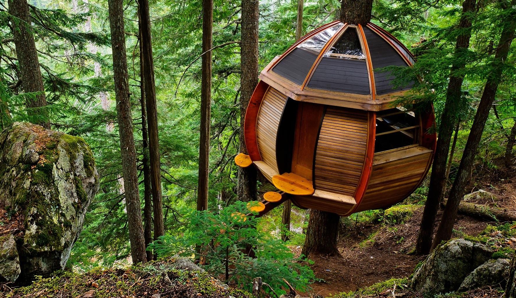 tree house-14