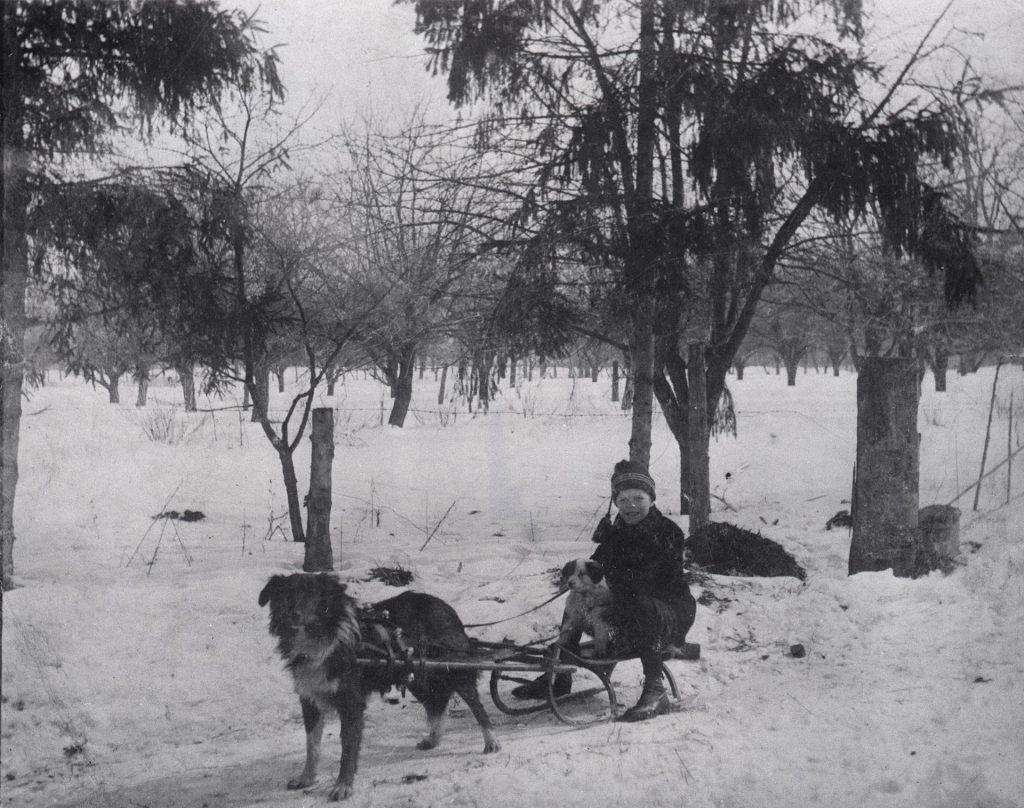 Snow sled Toronto