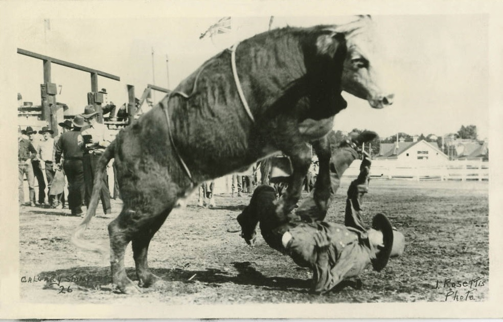 Calgary Stampede history