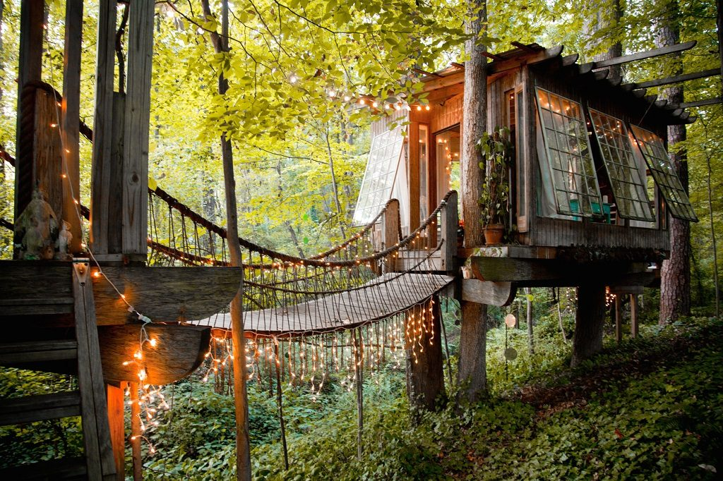 Tree house summer home
