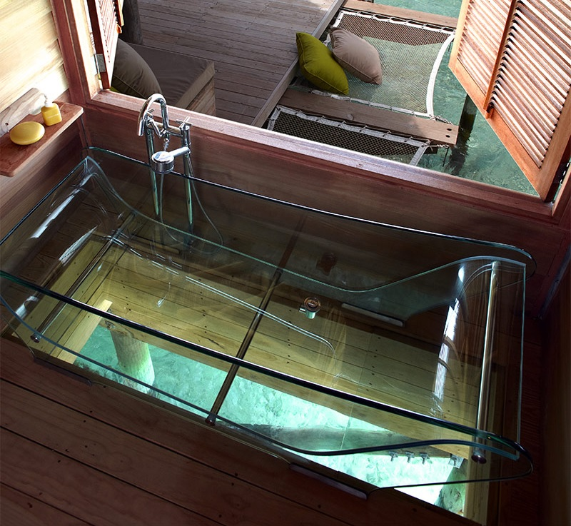glass-bottom bathtub