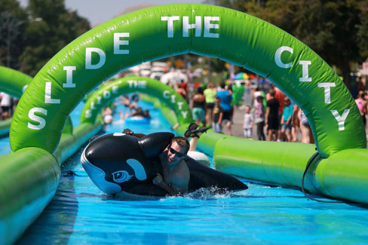 slide the city whale