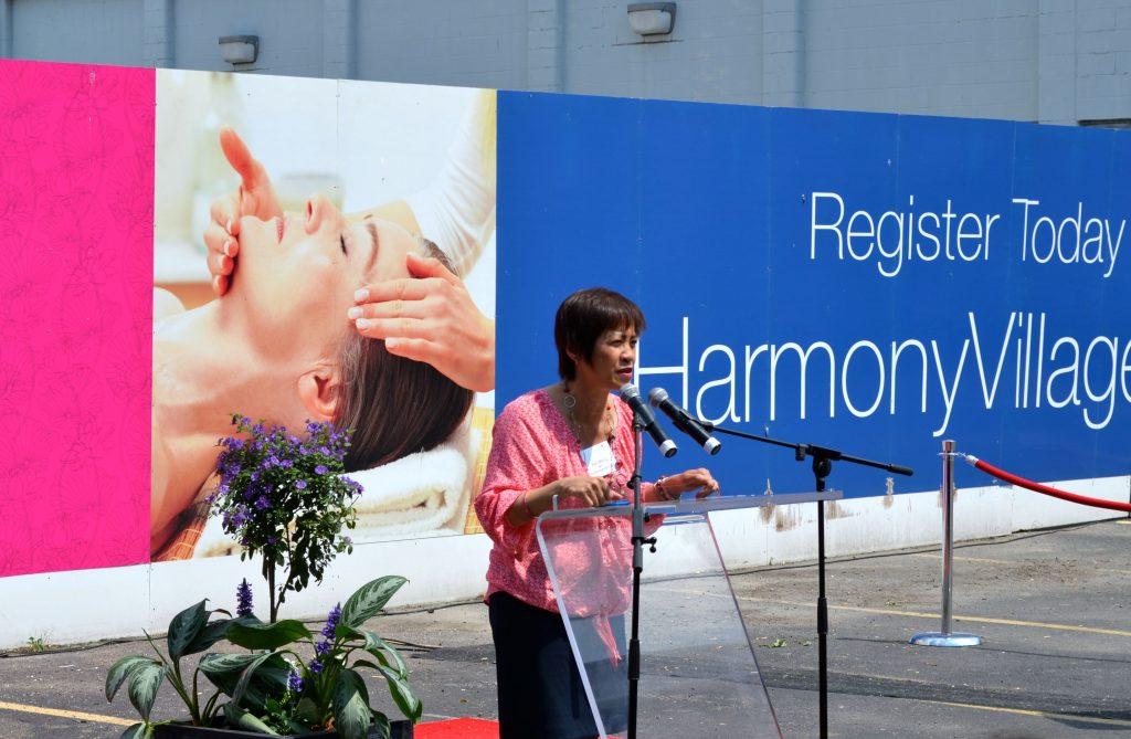 harmony village soo wong