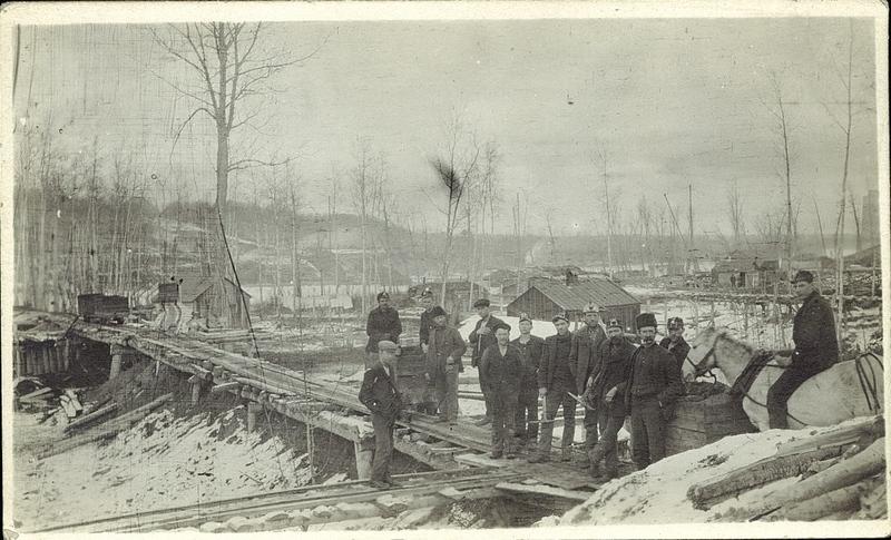 Edmonton Miners