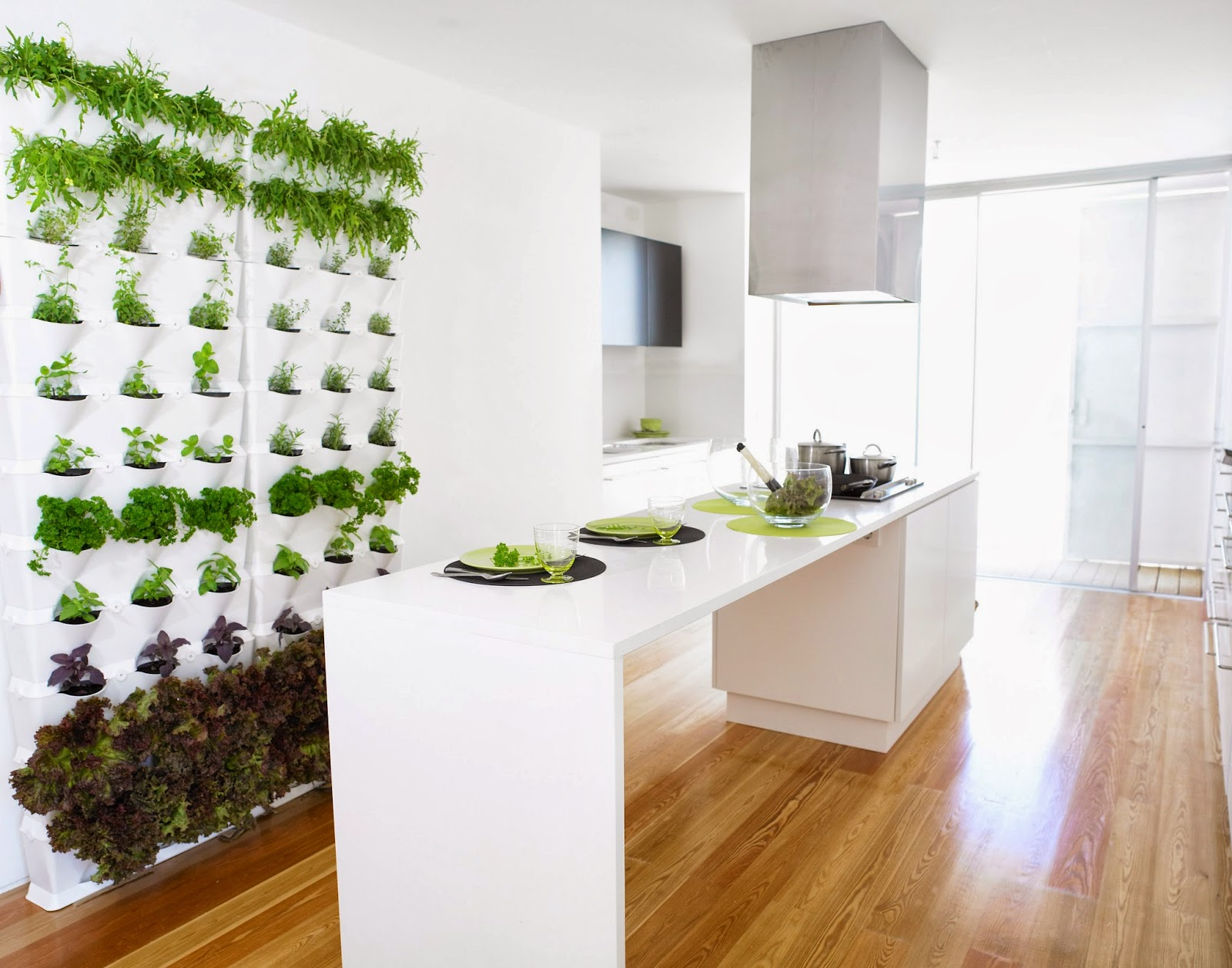 green wall herb garden