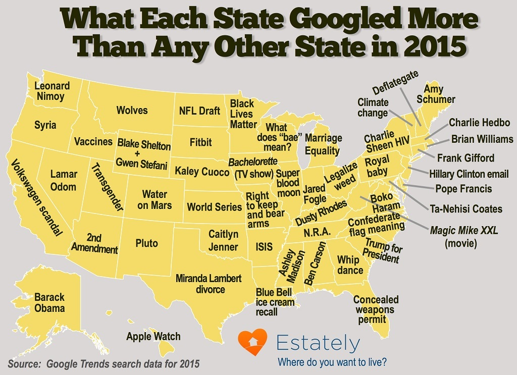 what each state googled 2015