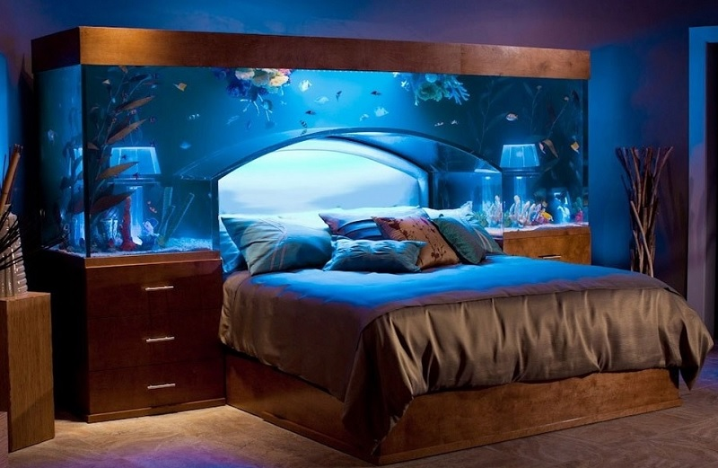 bed frame aquarium bedroom design