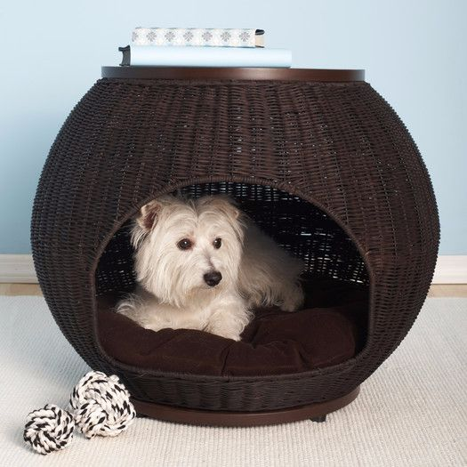 dog dome-compressed