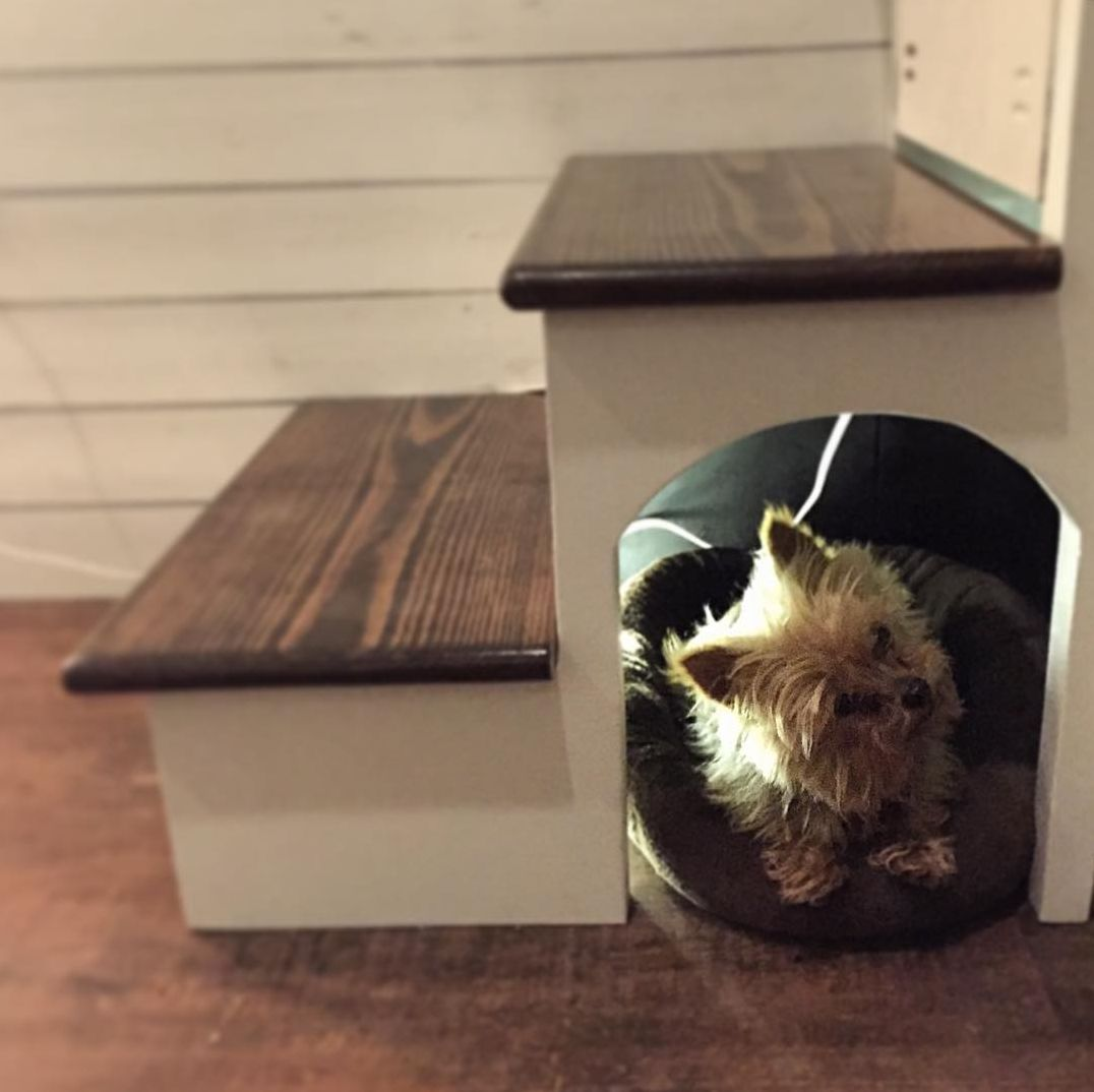 tiny house dog house