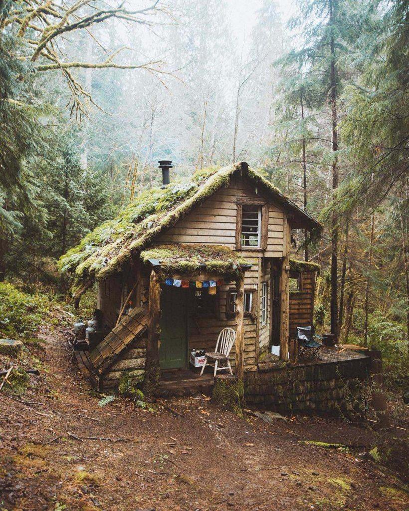 moss covered cabin-compressed